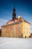 Het Stadhuis van Narva. Royalty-vrije Stock Fotografie