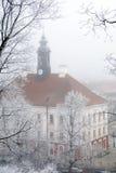Het stadhuis van Tartu in de wintermist stock afbeelding