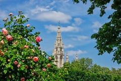 Het Stadhuis van Wenen Royalty-vrije Stock Fotografie