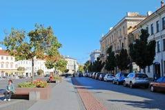 Het stadhuisplaats van de Vilniusstad op 24 September, 2014 Royalty-vrije Stock Afbeelding