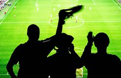 Het stadion van voetbalventilators Royalty-vrije Stock Afbeeldingen