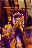Het Standbeeld Guanajuato Mexico van troubadourmariachi guitar singer stock fotografie