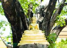 Het standbeeld van Boedha. Royalty-vrije Stock Afbeelding