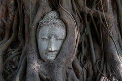Het standbeeld van Boedha Stock Afbeeldingen