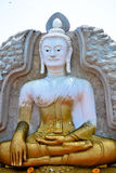 Het standbeeld van Boedha, Royalty-vrije Stock Foto