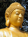 Het Standbeeld van Boedha Stock Foto