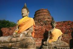 Het Standbeeld van Boedha - Ayuthaya Thailand Royalty-vrije Stock Foto's