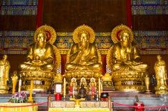 Het standbeeld van Boedha, Chinese tempel, Thailand Royalty-vrije Stock Foto
