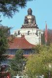 Het standbeeld van Boedha in de Chinese tempel van Jing Stock Foto's