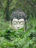 Het standbeeld van Boedha in de wildernis Stock Foto