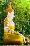 Het standbeeld van Boedha in Doi Suthep Royalty-vrije Stock Foto