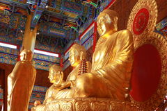 Het standbeeld van Boedha, gipspleister op Chinese tempel Stock Afbeelding
