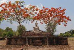 Het Standbeeld van Boedha onder rode boom Royalty-vrije Stock Afbeelding