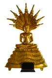 Het standbeeld van Boedha onder serpent Stock Foto's