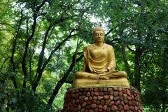 Het standbeeld van Boedha op de groene bosachtergrond Royalty-vrije Stock Afbeelding