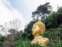 Het standbeeld van Boedha op heuvel in blauwe hemel Royalty-vrije Stock Foto's