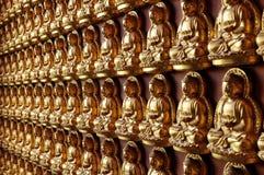 Het Standbeeld van Boedha op muur Stock Foto
