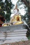 Het standbeeld van Boedha op natuurlijke achtergrond chaingmai THAILAND royalty-vrije stock foto