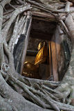 Het standbeeld van Boedha in oude kerk Stock Foto's