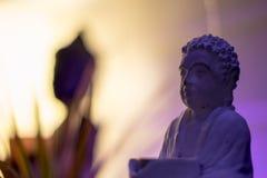 Het standbeeld van Boedha in purper licht met installatie op de achtergrond Royalty-vrije Stock Fotografie
