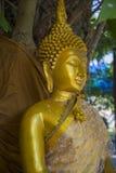 Het Standbeeld van Boedha - Thailand Royalty-vrije Stock Afbeeldingen