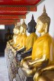 Het standbeeld van Boedha van Thailand Royalty-vrije Stock Fotografie