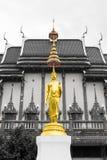 Het standbeeld van Boedha in Wat Ban Rai Stock Foto's