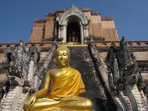 Het Standbeeld van Boedha in Wat Chedi Luang Thailand Stock Fotografie
