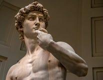 Het Standbeeld van David in Accademia Galleria royalty-vrije stock afbeeldingen