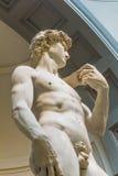 Het standbeeld van David door Michelangelo in Galleria-dell ` Accademia Di dat Firenze wordt blootgesteld Royalty-vrije Stock Fotografie