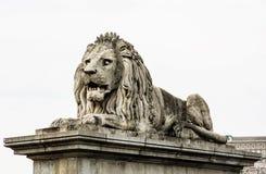 Het standbeeld van de leeuwsteen in Boedapest, Hongarije Stock Fotografie
