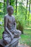 Het standbeeld van de steenBoedha van Zen in aard Stock Afbeeldingen