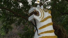 Het standbeeld van de tijgerdraak stock videobeelden