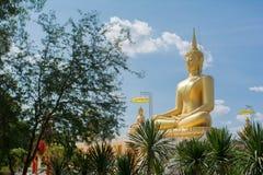 Het standbeeld van Naga Royalty-vrije Stock Foto