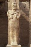 Het standbeeld van Ramesses van de farao binnen Tempels van Karnak Royalty-vrije Stock Foto's