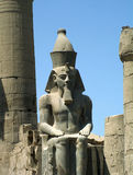 Het standbeeld van Ramses royalty-vrije stock afbeeldingen