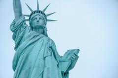 Het Standbeeld van Vrijheid in de Verenigde Staten stock afbeeldingen