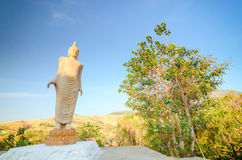 Het standbeeldachtergrond van Boedha Stock Foto's