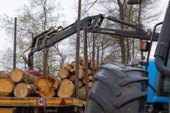 Het stapelen van boomstammen op een vrachtwagen Stock Afbeelding
