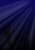 Het staren bij maanlicht stock illustratie