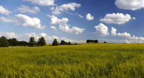 Het stedelijke Land van de Milieu Groene Riem Stock Fotografie