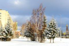 Het stedelijke landschap van de winter Stock Fotografie