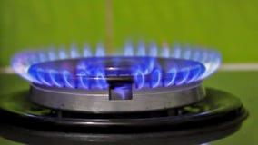 Het steekt omhoog blauw gas op een gasfornuis aan stock video