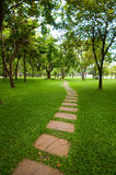 Het Steenblok met groen gras. Royalty-vrije Stock Fotografie
