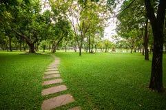 Het steenblok met groen gras Stock Fotografie