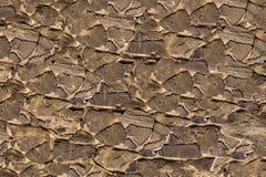 Het steencanvas vele scherpe ongelijke brede stroken stenen van de achtergrondbasis harde verwering cementeert basis ruwe steun royalty-vrije stock fotografie