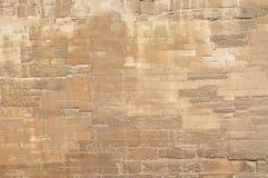 Het steenpatroon van de Grote Sfinx van Egypte Stock Afbeeldingen
