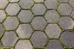 Het steenvoetpad met mos, sluit omhoog beeld royalty-vrije stock foto's