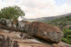 Het steken van rotsen van het Nationale Park van Matopos, Zimbabwe stock foto