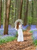 Het stellen in een de lentebos Royalty-vrije Stock Afbeelding